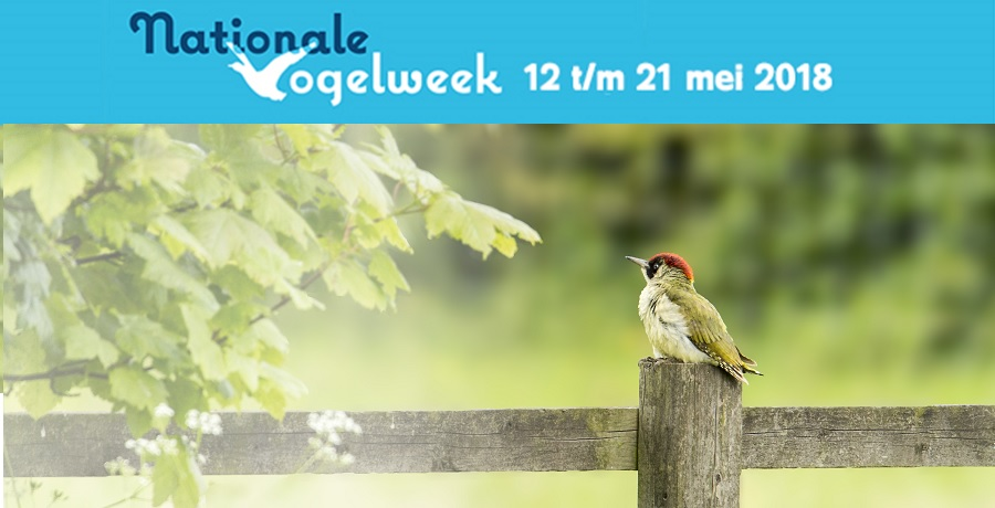 nationale vogelweek 2018